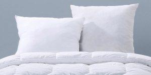 acheter oreiller ani acarien pas cher